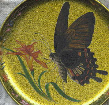six coasters: brown butterfly and flower closeup