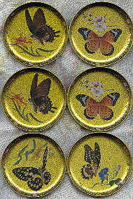 six coasters: different realistic butterflies on a gold background