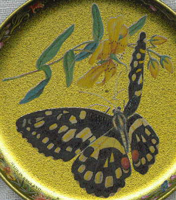 six coasters: closeup of spotted butterfly with open wings